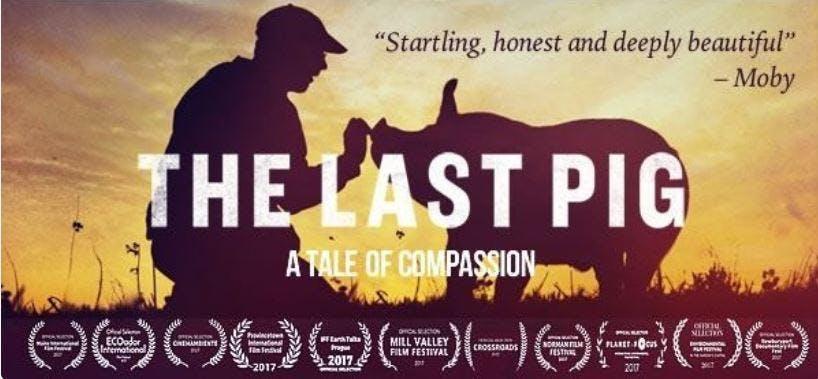 last_pig