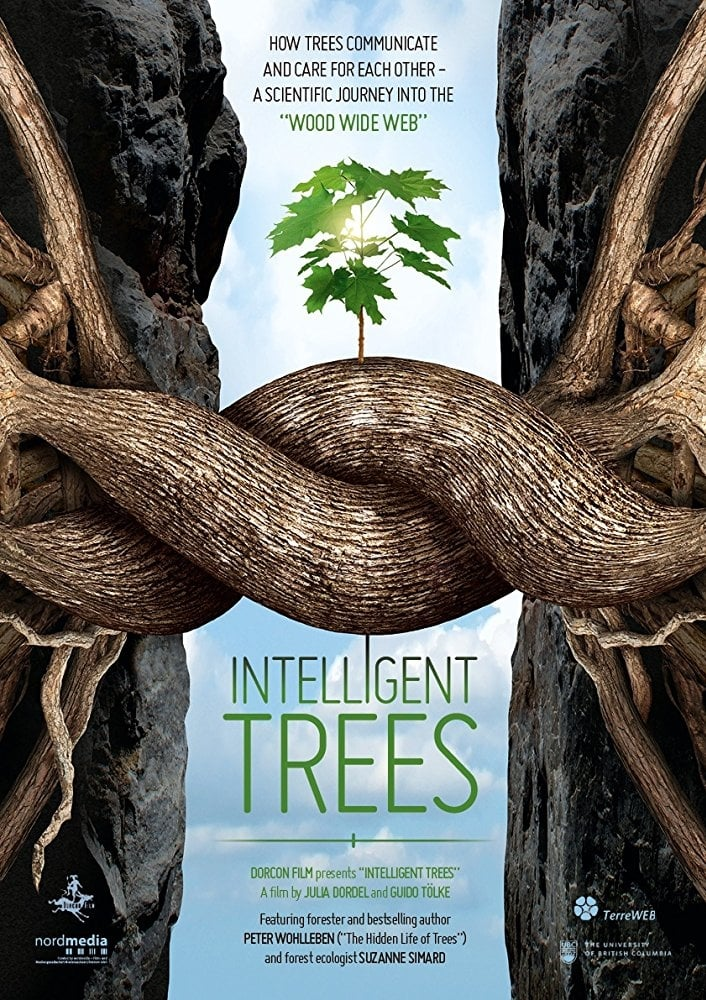 Intelligent-Trees