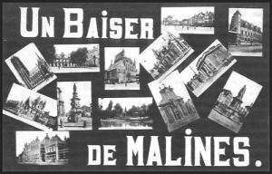 baiser_de_malines